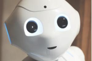 3996_robot