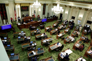 The California Assembly meets at the Capitol in Sacramento in 2020.(Rich Pedroncelli / Pool Photo)
